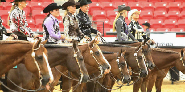 DO YOU WANT TO BE AN AQHA WORLD CHAMPION?