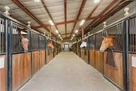 the inside of a horse barn with insulated ceiling and horses' heads over stall doors