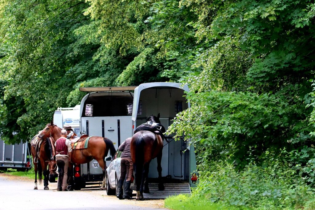 trailering horses on the road