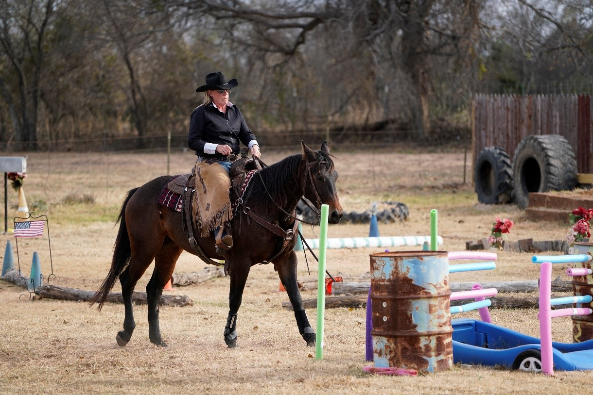 a girl riding a dark horse around bizarre obstacles like barrels, tires, pool noodles, flags