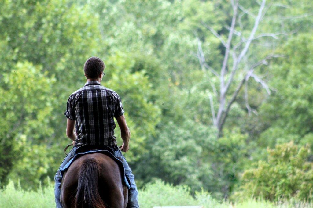 a single person riding horseback through a forest